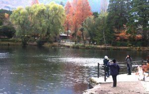 Sự cuốn hút từ vẻ đẹp mùa thu ở Nhật Bản