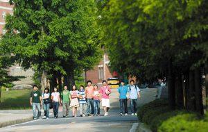 Thông tin Trường Đại học UST - Hàn Quốc