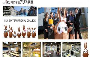 Du học Nhật Bản ngành điều dưỡng tại Osaka