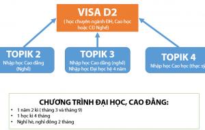 visa D2 hàn quốc