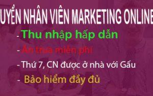 Việc làm Nhân viên Marketing Online