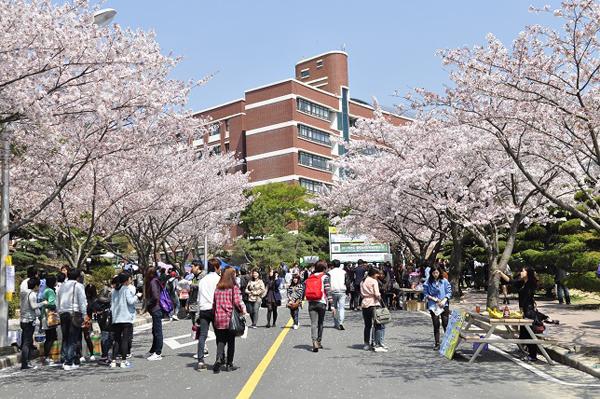 Top 7 trường đại học phía nam Hàn Quốc