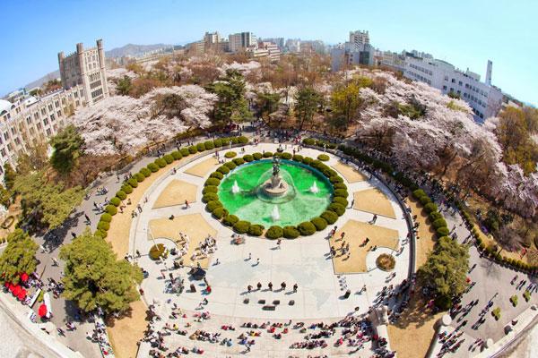 Giới thiệu trường đại học kyung il
