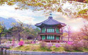 Trường đại học tốt nhất Hàn Quốc