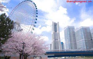 Du học Nhật Bản tại Yokohama