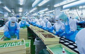 Xuất khẩu lao động đóng gói thực phẩm tại Osaka, Nhật Bản
