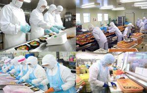 Đơn hàng cơm hộp tại Saitama Nhật Bản