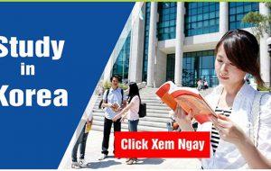 Cần chuẩn bị gì khi du học Hàn Quốc năm 2020?