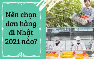 di-nhat-don-hang-nao-tot