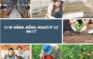 don-hang-nong-nghiep-di-nhat-ban